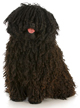 puli - NO.1# SMALL DOGS BREED CHART -LIST OF  SMALL DOGS THAT DON'T SHED